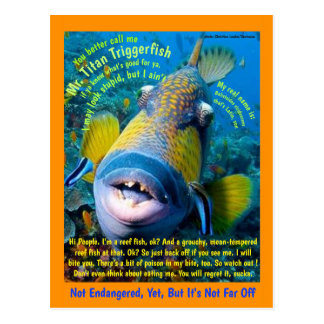 Titan Triggerfish, for the child, a humorous - Postcard