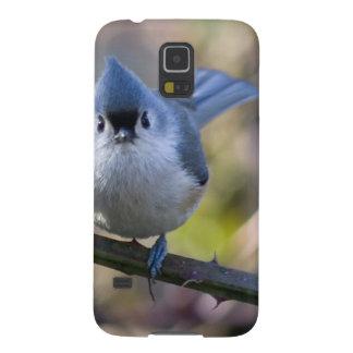 Titmouse Samsung Galaxy Nexus Cover