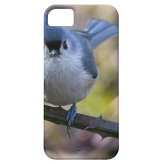 Titmouse iPhone 5 Cover
