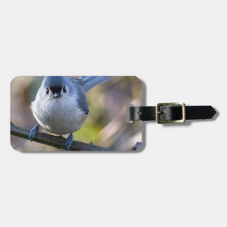 Titmouse Tag For Luggage