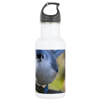 Titmouse 532 Ml Water Bottle
