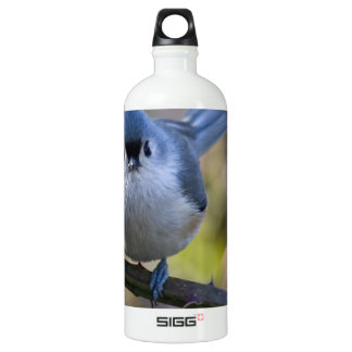 Titmouse SIGG Traveller 1.0L Water Bottle