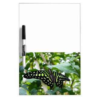 TJ Green Butterfly Dry Erase Board Message Board