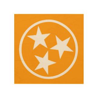 TN Stars White on Orange Wood Prints