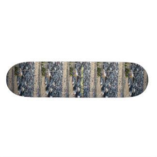 TNIT Skateboard (SoCal Beaches)