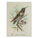 To a dear friend, Vintage Hummingbird Posters