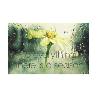 To everything a Season Rain and Flower Window Canvas Print