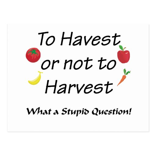To Harvest or not to Harvest Post Card