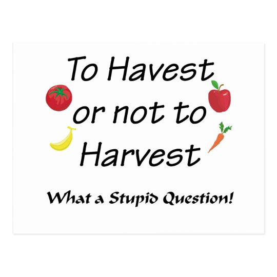 To Harvest or not to Harvest Postcard