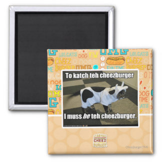 To katch teh cheezburger magnet