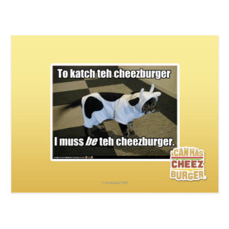 To katch teh cheezburger postcard