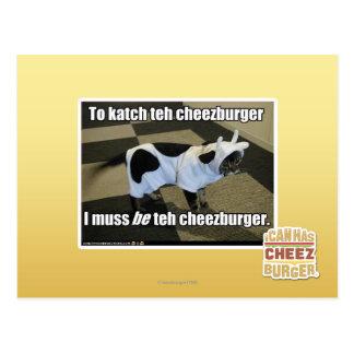 To katch teh cheezburger postcard