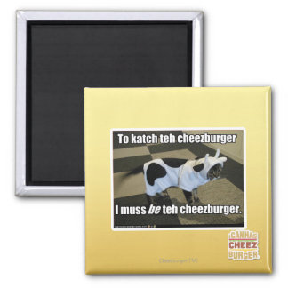 To katch teh cheezburger square magnet