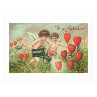 To My Valentine Cherubs with Hearts Postcard