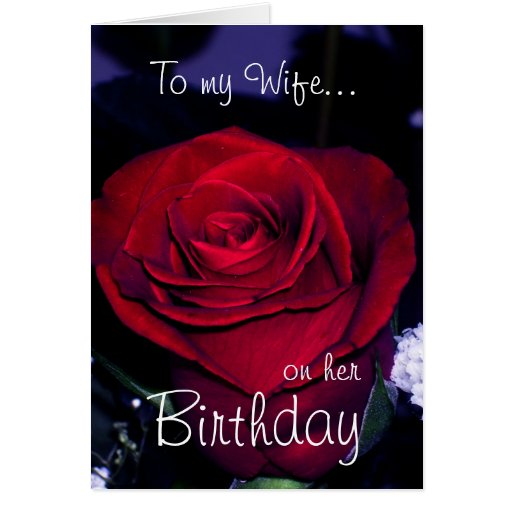To my Wife on her Birthday-Red Rose Romantic Greeting Card