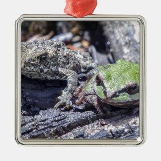 toad-3550 Silver-Colored square decoration