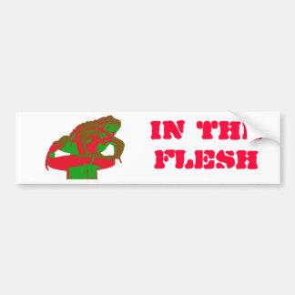 Toad Bumper Sticker