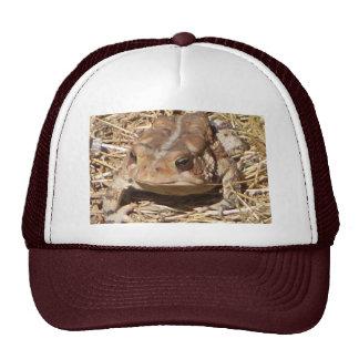 Toad Cap Mesh Hats