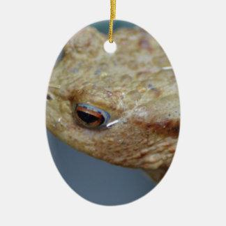 Toad Ceramic Oval Decoration