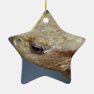 Toad Ceramic Star Decoration