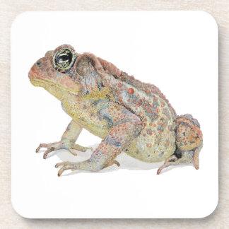 Toad Coaster