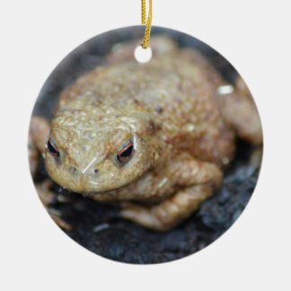 Toad Christmas Tree Ornaments
