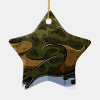 Toad Double-Sided Star Ceramic Christmas Ornament