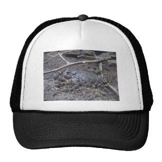 toad trucker hat