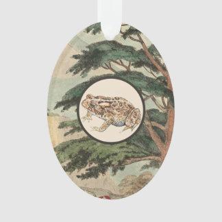 Toad In Natural Habitat Illustration