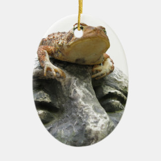 Toad on Garden Happy Face Rock Christmas Tree Ornaments
