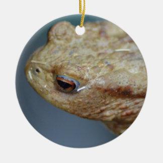 Toad Round Ceramic Decoration