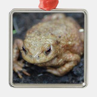 Toad Silver-Colored Square Decoration