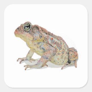 Toad Square Sticker