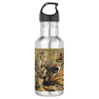 Toadly Awesome Toad 532 Ml Water Bottle