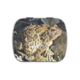 Toadly Awesome Toad Candy Tin