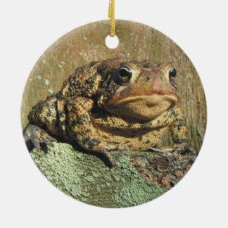 Toadly Awesome Toad Christmas Ornament