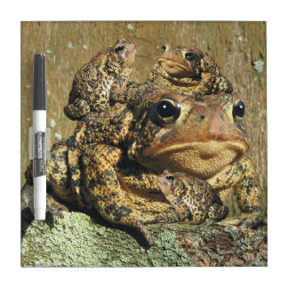 Toadly Awesome Toad Dry Erase White Board