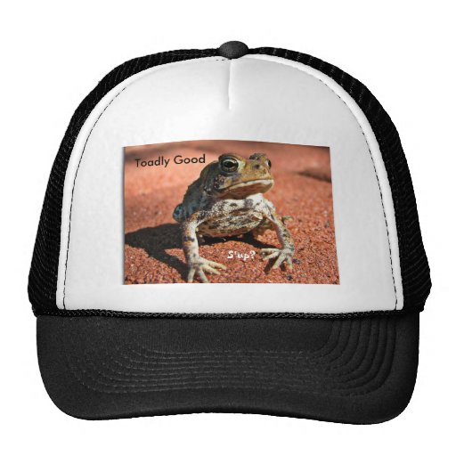 Toadly Good, S'up? Hat
