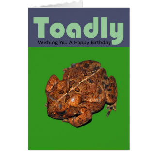 Toadly Wishing You A Happy Birthday Greeting Card