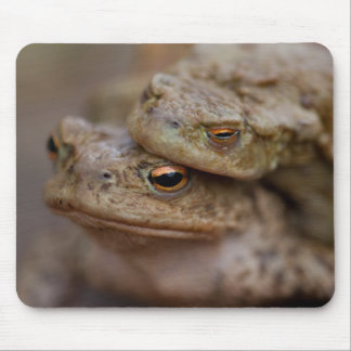 """Toads """"The Ugly Couple""""Mousepad"""