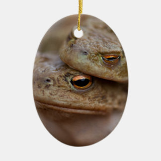 """Toads """"The Ugly Couple"""" Ornament"""