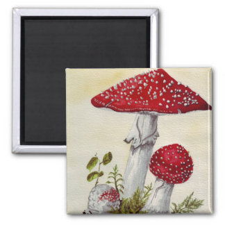 Toadstool Square Magnet
