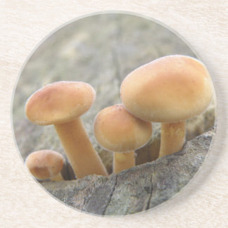 Toadstools on a Tree Trunk Coasters