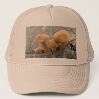 Toadstools on a Tree Trunk Hat