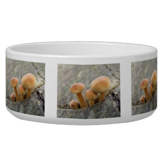 Toadstools on a Tree Trunk Pet Bowl