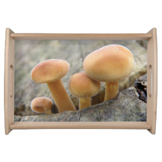 Toadstools on a Tree Trunk Serving Tray