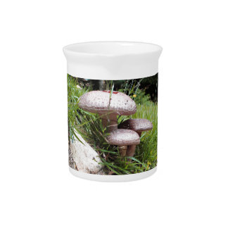 Toadstools Pitcher