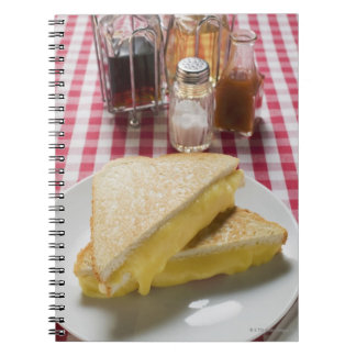 Toasted cheese sandwiches on plate, vinegar, notebook