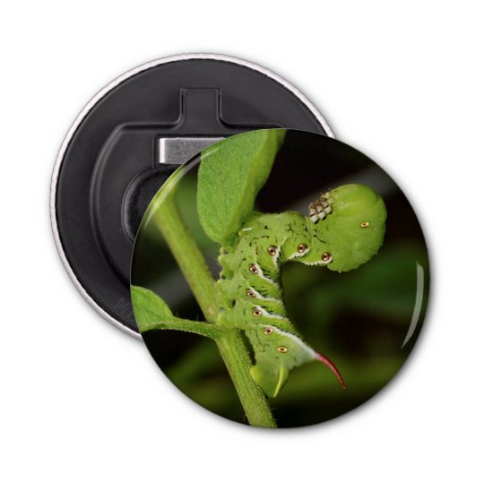 Tobacco Hornworm Caterpillar Magnet Bottle Opener