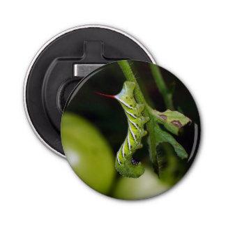 Tobacco Hornworm Caterpillar Magnet Bottle Opener